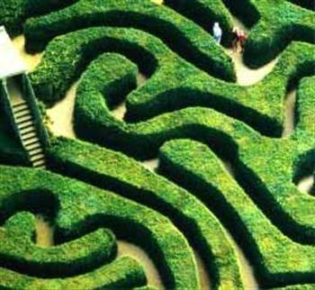 el-jardin-de-senderos-que-se-bifurcan-4